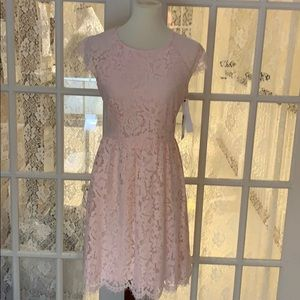 Kensie  dresses blush lace spring dress NWT - 10